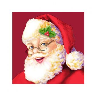 Christmas Cocktail Napkins - Santa Claus - 20 ct.