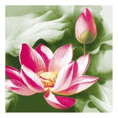 Dining Collection Lunch Napkins  - Pink Lotus - 20 ct.