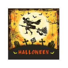 Halloween Cocktail Napkins - Flying Witch - 20 ct.