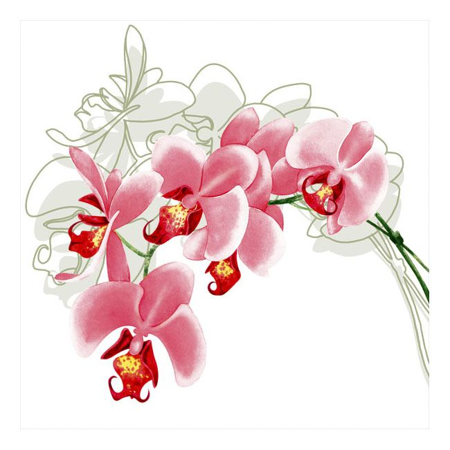 Dining Collection Lunch Napkins - Orchid Stem - 20 ct.